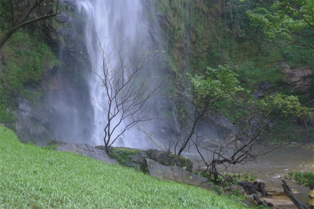 Wli waterfall-bottom of falls-grass 2