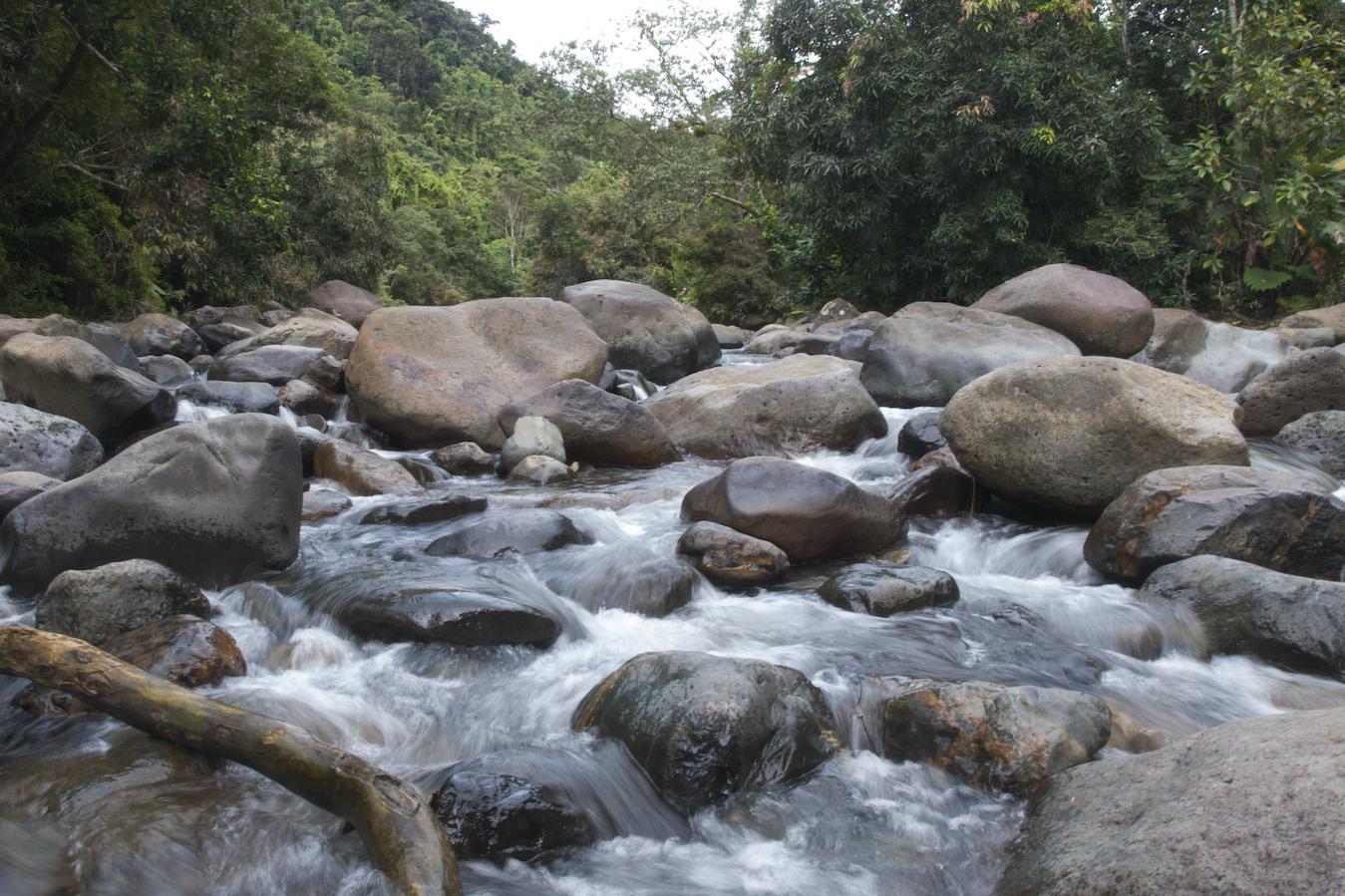Puerto Rico Rainforest 35-river
